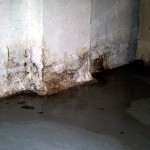Basement and Crawlspace Foundation Wall Inspection